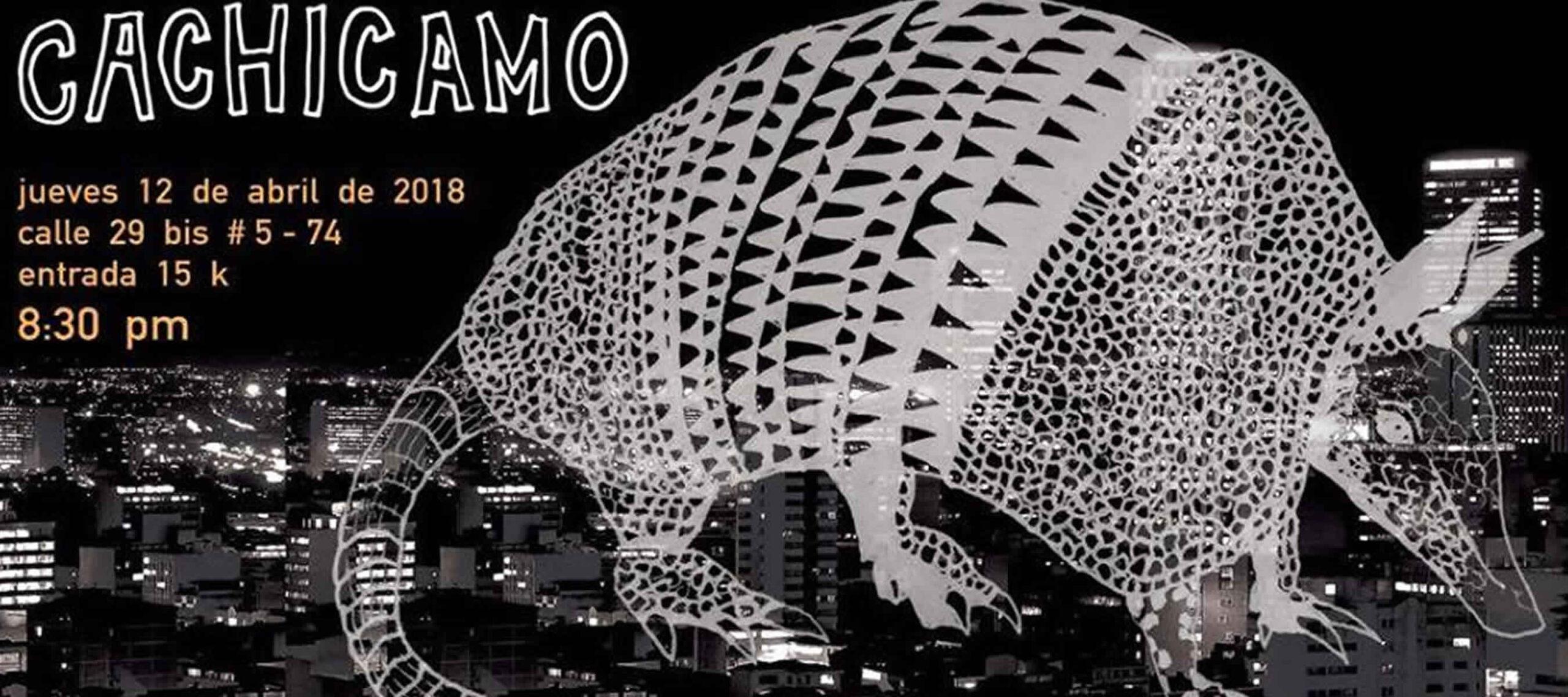 Cachicamo - smoking molly